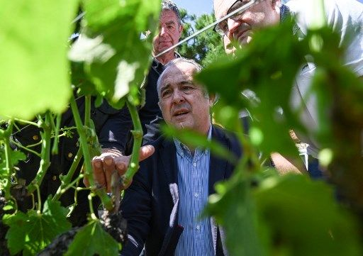 French minister of Agriculture Didier Guillaume (C) looks on a vineyard hit by hailstorm next to farmers in La Roche-de-Glun near Romans-sur-Isere, southeastern France on June, 16, 2019 after a storm that caused one death in Haute-Savoie department and heavy damages in Drome department (Photo by PHILIPPE DESMAZES / AFP)