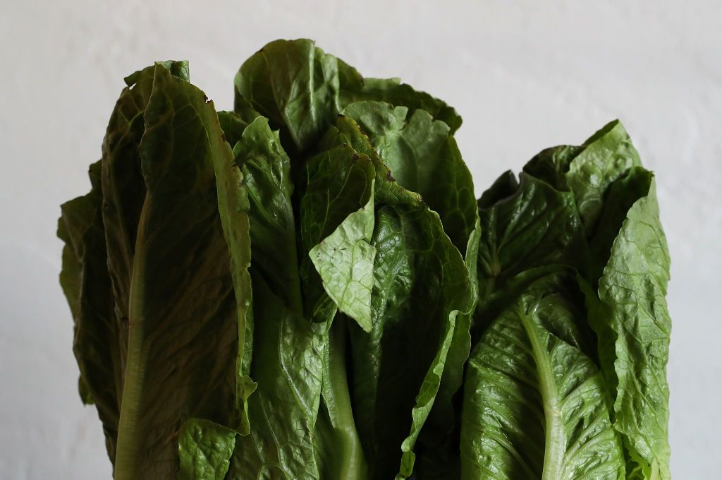 SAN ANSELMO, CA - MAY 02: In this photo illustration, Romaine lettuce is displayed on May 2, 2018 in San Anselmo, California. One person in California has died from E. coli linked to romaine lettuce. The Centers for Disease Control and Prevention has confirmed a total to 121 cases in 25 states. (Photo by Justin Sullivan/Getty Images)